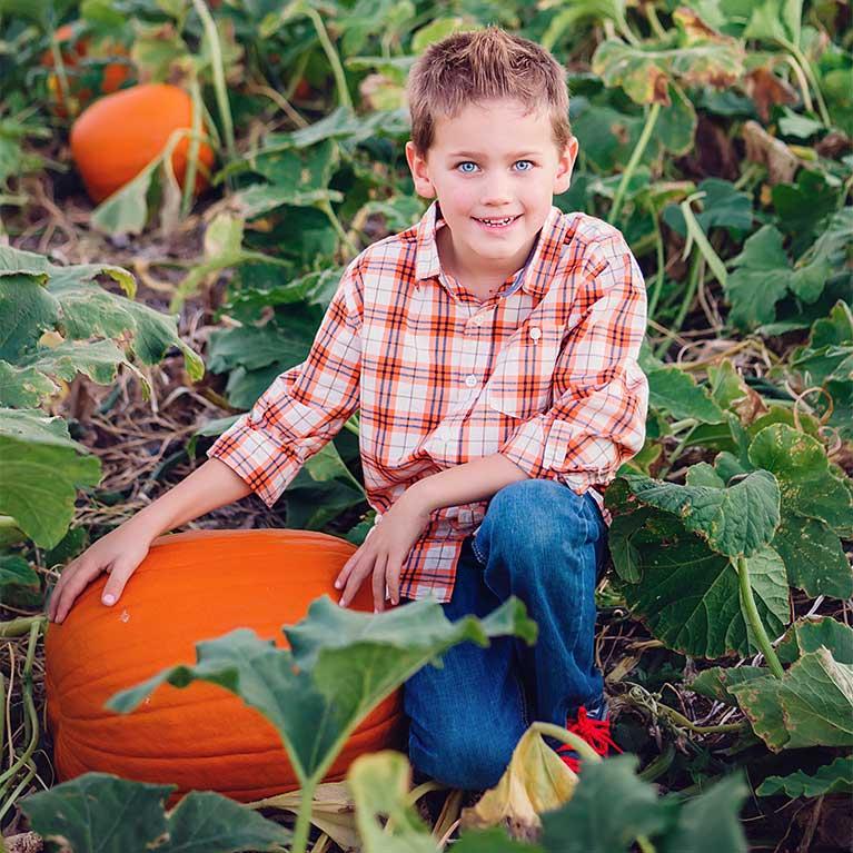 PumpkinPickYourOwn5